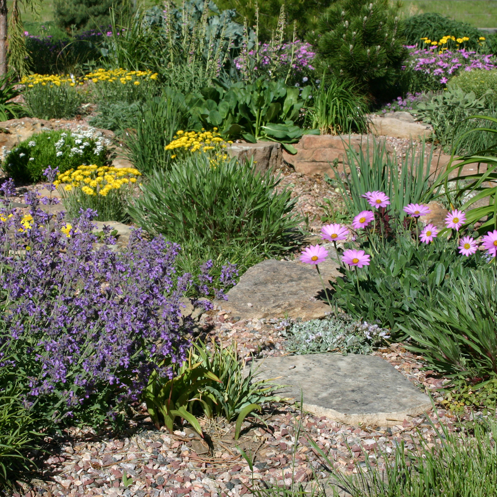 Zeroscaping – Or Xeriscaping Your Garden